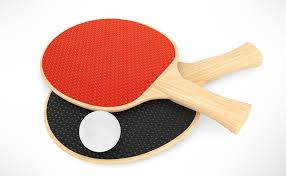 Buy Table Tennis Bats Online at Best Prices in SportsGEO