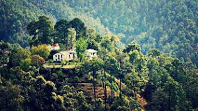 Binsar Best Family holiday in budget, Uttarakhand