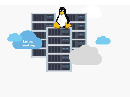 Hosting Precise, Best Web Hosting