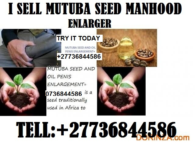 Mutuba seed and oil manhood enlarger from Africa +27736844586