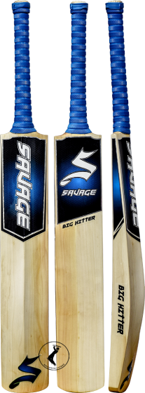 Online Cricket Bats at Latest Price | Top Quality | Online Store